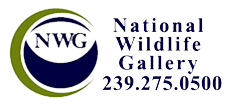 National Wildlife