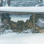 bateman-woodshedinwinter.jpg