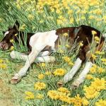doolittle-springbreak2.jpg
