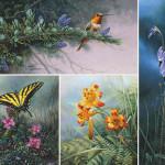 lyman-wildflowersuite.jpg