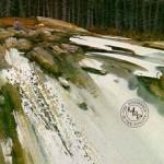 solberg-virginwaters.jpg